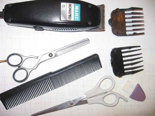 Here are my tools!  The original set included the clippers and two attachments, as well as a little cleaning brush.  I added the comb and scissors.  My most recent addition was the thinning shears.
